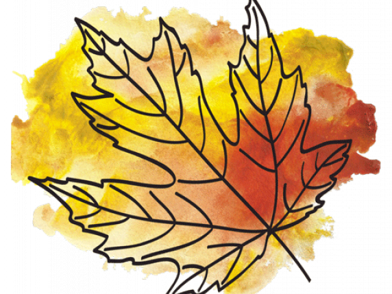 Fall leaves with color splashes by Laure Paillex