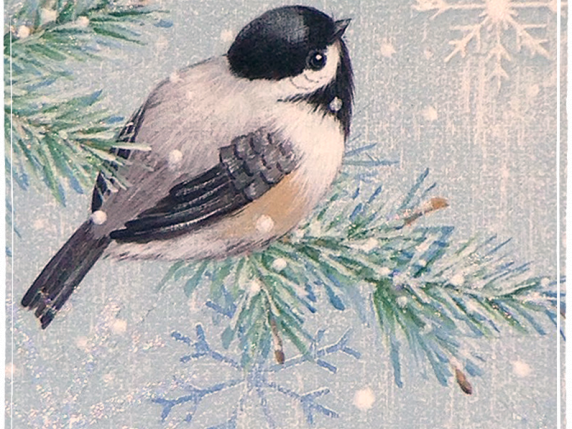 Watch and Wait hand painted chickadee on pine bough with snow
